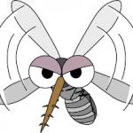 虫よけにおすすめのアロマオイル、ブレンドレシピ